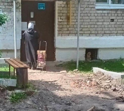 Общественники признали неудовлетворительным благоустройство в Кулебаках - фото 2