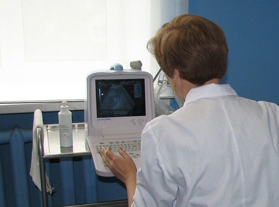 Нижегородские врачи провели около 20 телемедицинских консультаций - фото 1