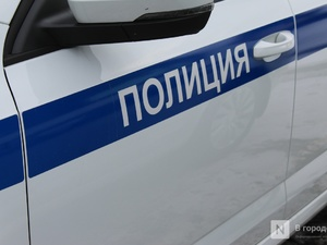 Парламентарий от ЛДПР в Нижнем Новгороде прокомментировал законопроект о штрафах за езду без разрешения
