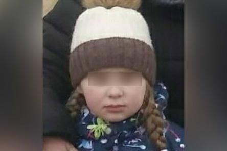 Девятилетнюю девочку разыскивают на Бору