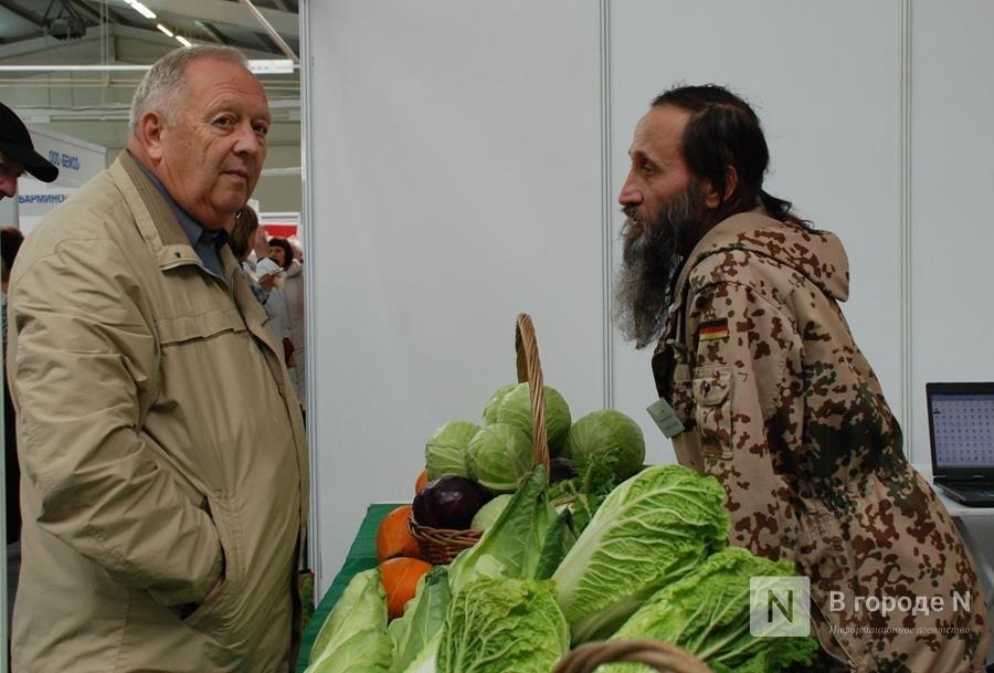 Центр продажи фермерской продукции построят в Ленинском районе за 2 млн рублей - фото 1