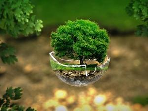 «Ростелеком» поддержал экологический конкурс «Территория завтра» в Нижнем Новгороде