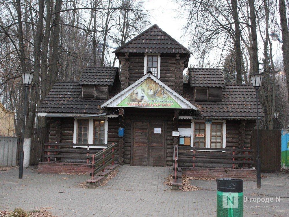 Чем живет «Мишутка»: репортаж из закрытого нижегородского зоопарка - фото 2