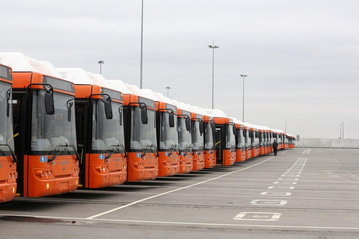 56 новых автобусов прибыли в Нижний Новгород в День народного единства - фото 1
