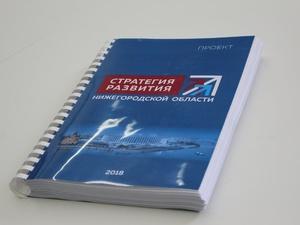 У Нижнего Новгорода появится своя Стратегия развития