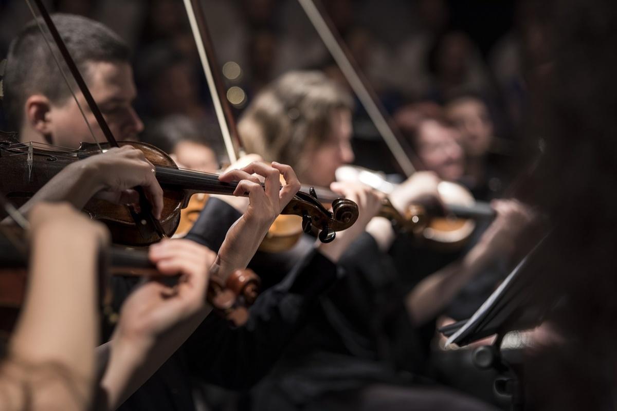 Симфонические концерты начинает транслировать нижегородская филармония через интернет - фото 1