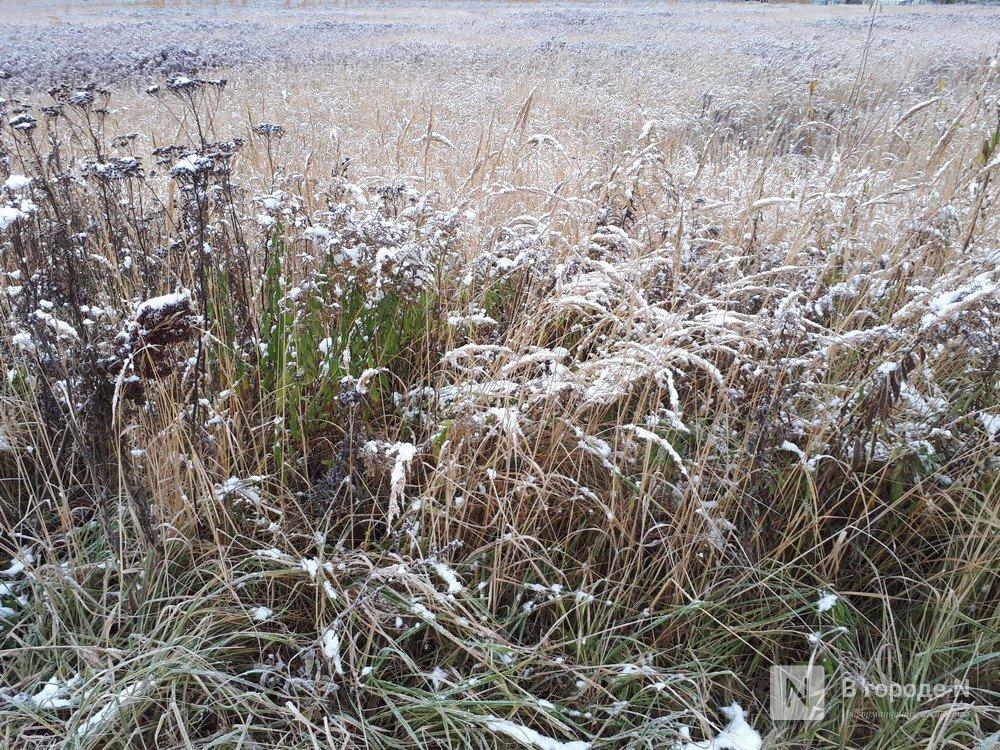 Почти два миллиона рублей задолжал работникам директор сельхозпредприятия Уренского района - фото 1