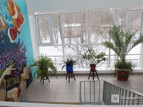 Возрожденный «Дельфин»: как изменился знаменитый нижегородский бассейн - фото 21