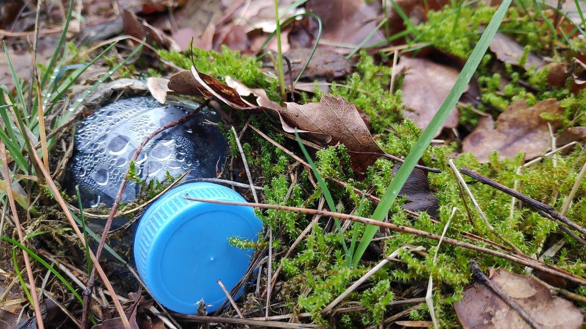 Какой вред здоровью причиняет магазинная вода из пластиковых бутылок - фото 2