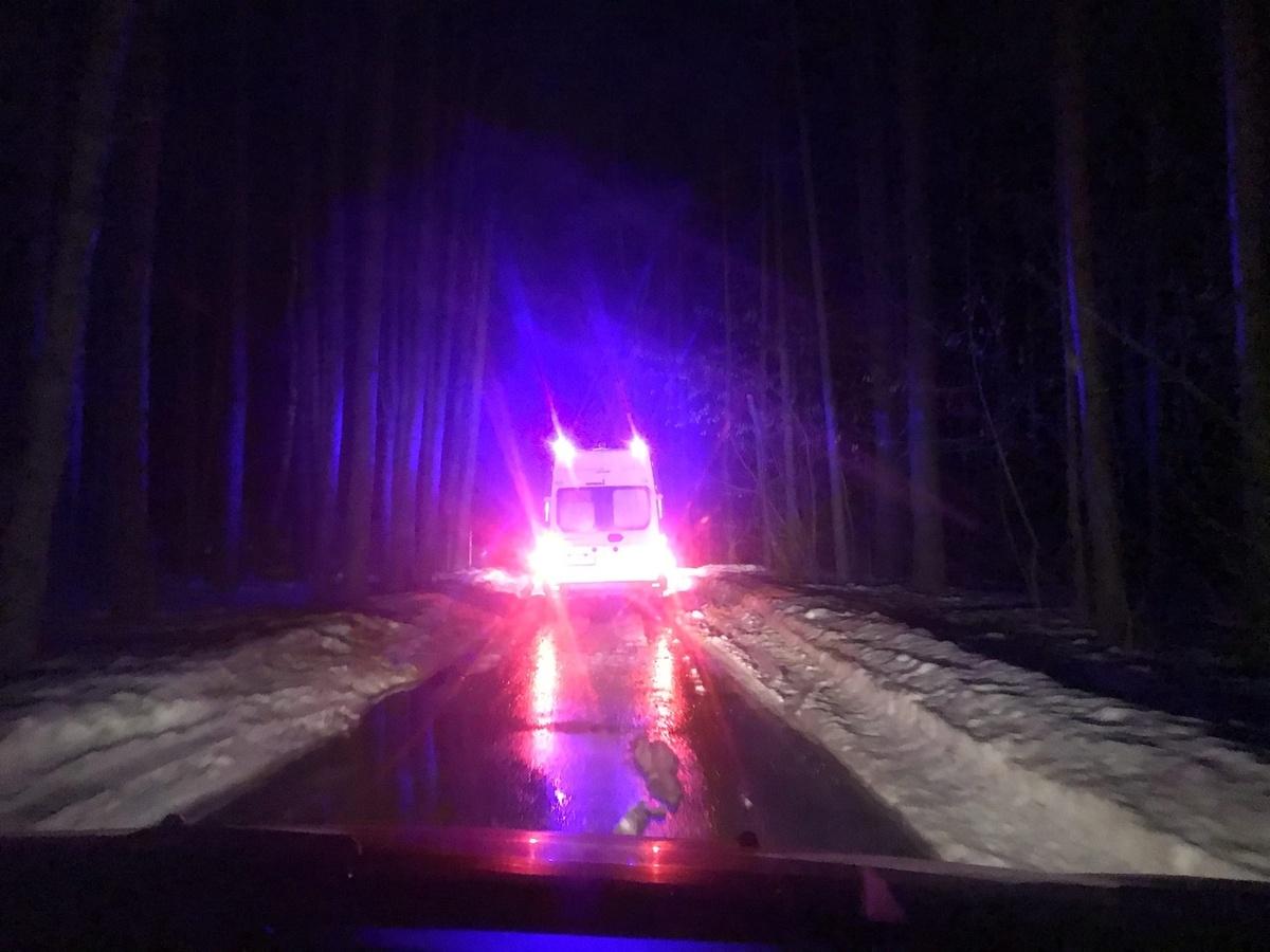 Трое мужчин заблудились в лесу на Сортировке - фото 1