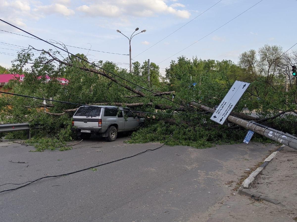 Ураган в Нижегородской области повалил деревья на дороги и автомобили - фото 2