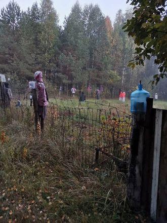 Поляну с повешенными ростовыми куклами нашли грибники в арзамасском лесу - фото 3