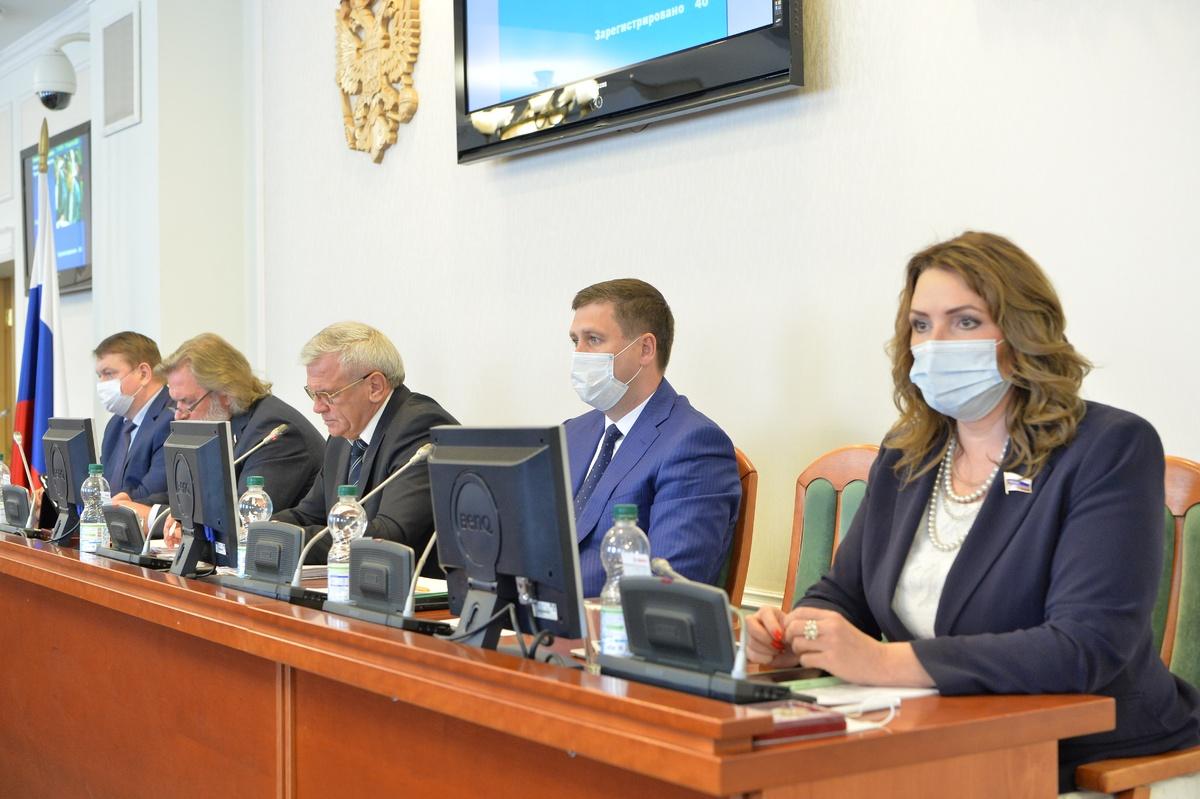 Нижегородские депутаты приняли ряд законов для оптимизации дальнейшей работы Законодательного собрания - фото 1