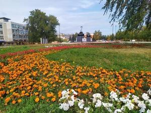 Голубые ели высадили в сквере на площади Славы в Сормовском районе