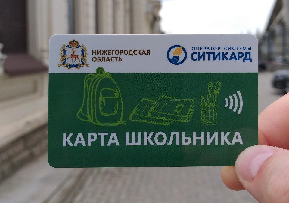 Единые льготные проездные для школьников появятся в Нижегородской области - фото 1