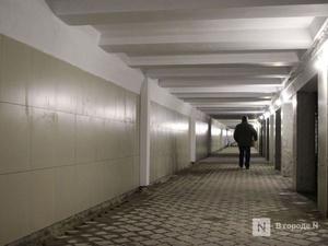 Никитин пообещал навести порядок в переходе у Московского вокзала