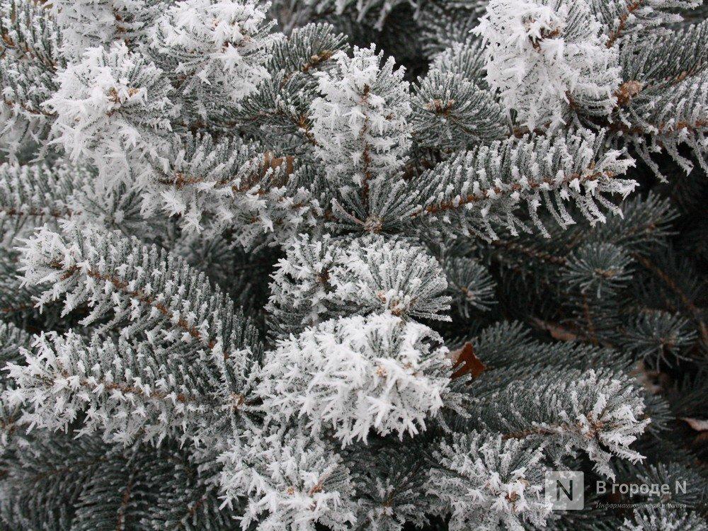МЧС предупреждает нижегородцев о резком похолодании до -22°C - фото 1