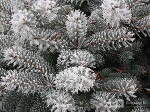 МЧС предупреждает нижегородцев о резком похолодании до -22°C