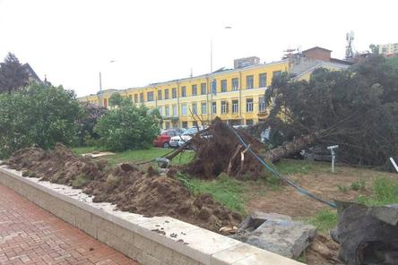 Ураган вырвал с корнем деревья на Нижне-Волжской набережной (ФОТО)